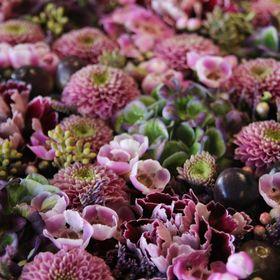 BlomstVG2 - Godalen