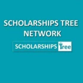 ScholarshipsTreeB