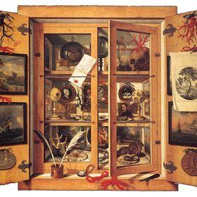 Wonder Cabinet Arts