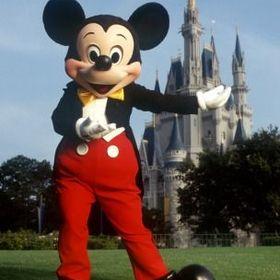 Walt Disney World Traveler