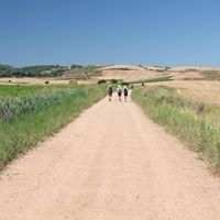 Jakobsweg-Lebensweg, Camino de Santiago