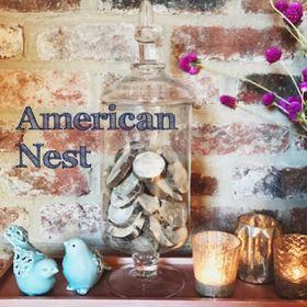 American Nest