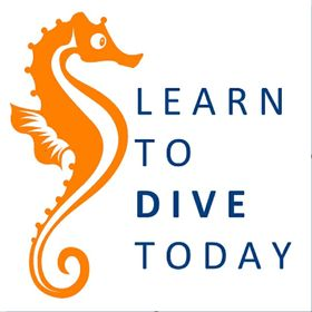 Learn to Dive Today