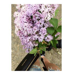 Virág Kuborczik