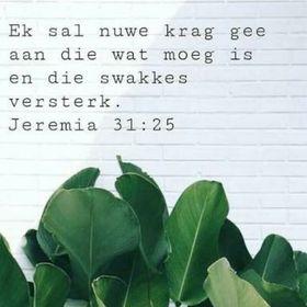 Marli Esterhuizen