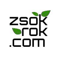 zsokrok com