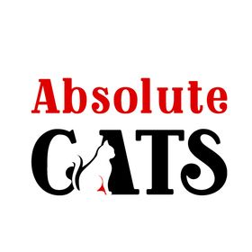 Absolute Cats | cat care tips | cat health care | cat products
