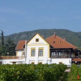 Bacchus Apartman - Vinotéka (Badacsony-Lake Balaton-Hungary)