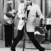 Budianto Elvis