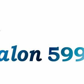 SALON 599