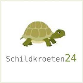 Schildkroeten 24