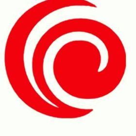 Bancasa Realty & Investments Corp