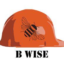 B Wise Contractors