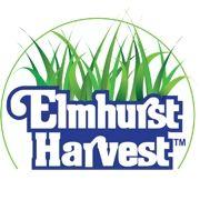 elmhursharvest