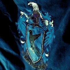Ravenclaw Student