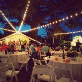 Bay Area Event Lights
