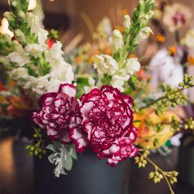 Flora de Série