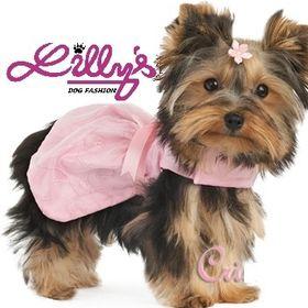 Lillys Dog Fashion
