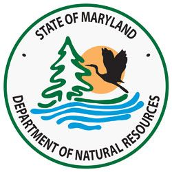 MARYLAND DEPARTMENT OF NATURAL RESOURCES STATE FOREST /& PARK SERVICES TRAVEL PIN