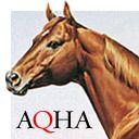 American Quarter Horse Association (AQHA)