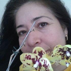 Sirlene Ferreira Ferreira