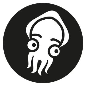 Startled Squid Design Group