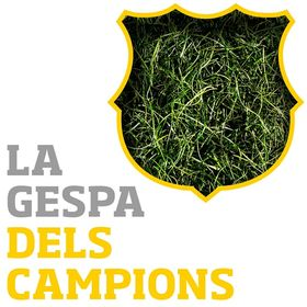 CespedBarcelona
