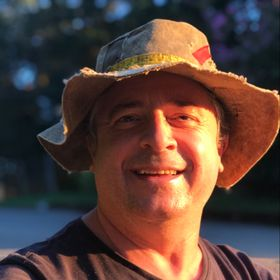 Paulo Viana
