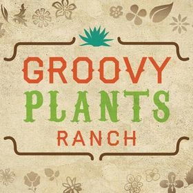 Groovy Plants Ranch