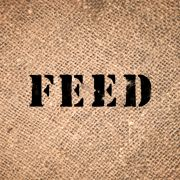 Feed also feedprojects on pinterest