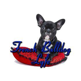 www.MyFrenchBulldogShop.com