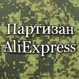 Партизан Партизаныч
