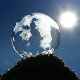 Winterkristall