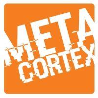 Meta Cortex
