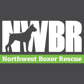 Northwest Boxer Rescue