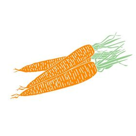 24 Carrot Diet | Kyla Matton Osborne