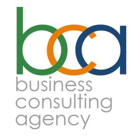 Business Consulting Agency