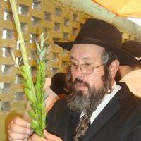 Abi Nehed