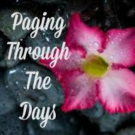 Paging Through The Days