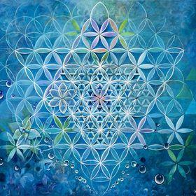 Consciousness Web