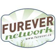 Furever Network