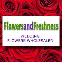 FlowersandFreshness.com  Wedding Flowers Wholesaler