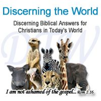 Discerning the World