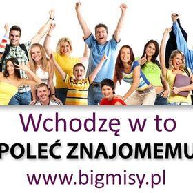 misy.pl