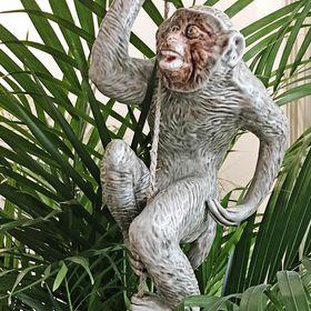 Monkey Flat