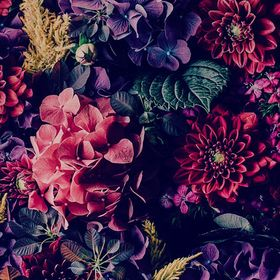 Fine Decor Floral Forêt Arbres Caractéristique Papier Peint-Rouge terre cuite et taupe
