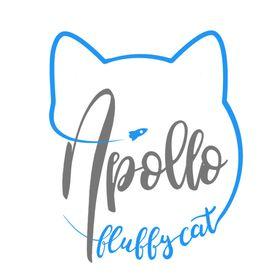 Apollo Fluffy Cat 😺