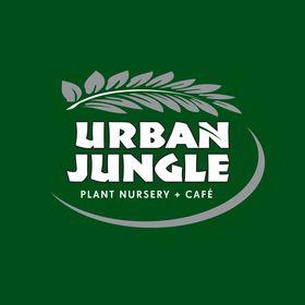 Urban Jungle Plants