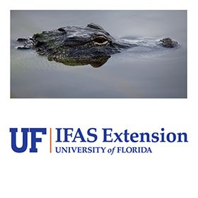 UF/IFAS Extension Duval County FCS