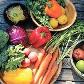 Top 10 Health Benefits
